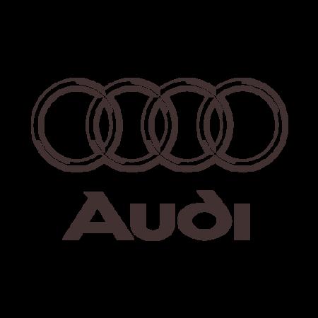 EVA коврики для Audi (Ауди) в салон