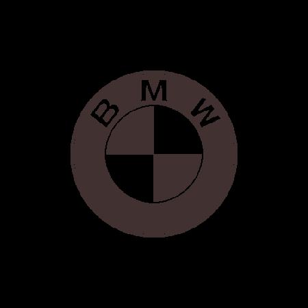 EVA коврики для BMW (БМВ) в салон