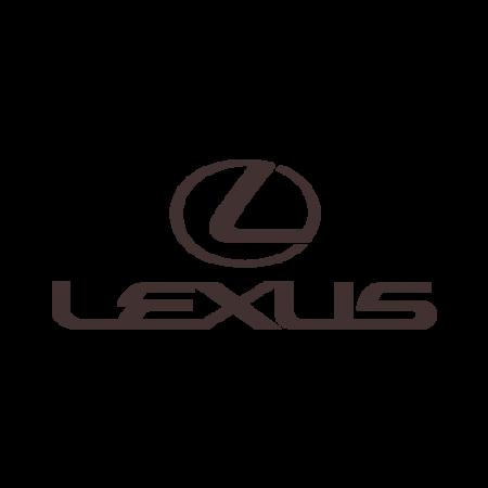 EVA коврики для Lexus (Лексус) в салон